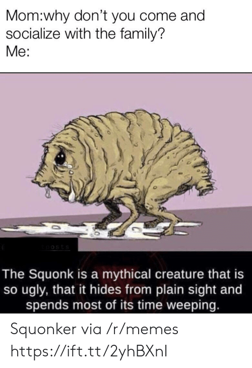 weeping: Mom:why don't you come and  socialize with the family?  Me:  The Squonk is a mythical creature that is  so ugly, that it hides from plain sight and  spends most of its time weeping. Squonker via /r/memes https://ift.tt/2yhBXnI