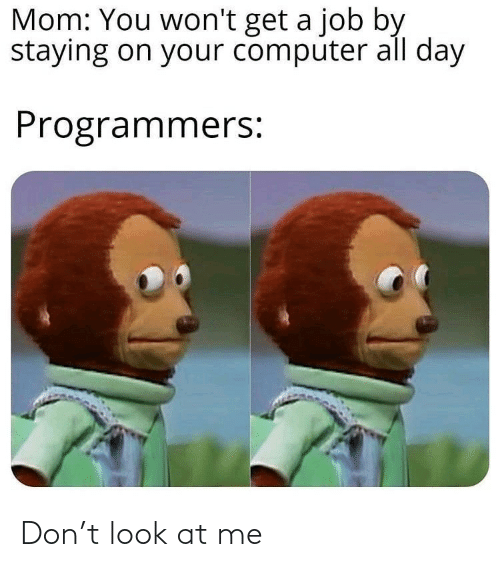 At Me: Mom: You won't get a job by  staying on your computer all day  Programmers: Don't look at me