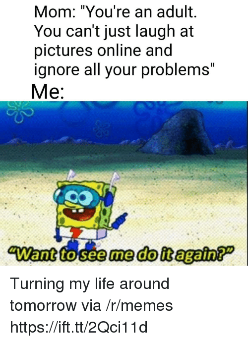 "Life, Memes, and Pictures: Mom: ""You're an adult.  You can't just laugh at  pictures online and  ignore all your problems""  Me:  ""Want to seeme doit again? Turning my life around tomorrow via /r/memes https://ift.tt/2Qci11d"