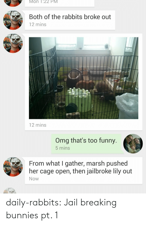 Broke Out: Mon 1:22 PM  Both of the rabbits broke out  12 mins  12 mins  Omg that's too funny.  5 mins  From what I gather, marsh pushed  her cage open, then jailbroke lily out  Now daily-rabbits:  Jail breaking bunnies pt. 1