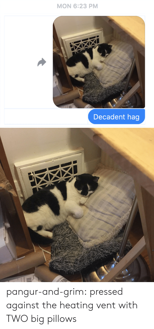 Tumblr, Blog, and Http: MON 6:23 PM  Decadent hag pangur-and-grim: pressed against the heating vent with TWO big pillows