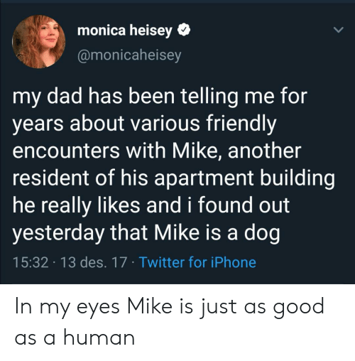 des: monica heisey  @monicaheisey  my dad has been telling me for  years about various friendly  encounters with Mike, another  resident of his apartment building  he really likes and i found out  yesterday that Mike is a dog  15:32 13 des. 17 Twitter for iPhone In my eyes Mike is just as good as a human