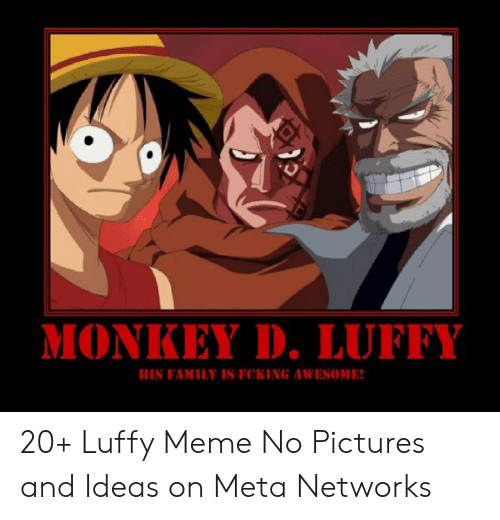 Monkey D Luffy His Family Is Fcking Awesome 20 Luffy Meme