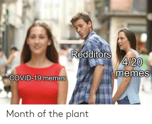 plant: Month of the plant