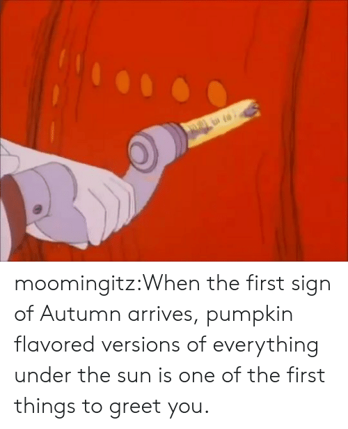 autumn: moomingitz:When the first sign of Autumn arrives, pumpkin flavored versions of everything under the sun is one of the first things to greet you.