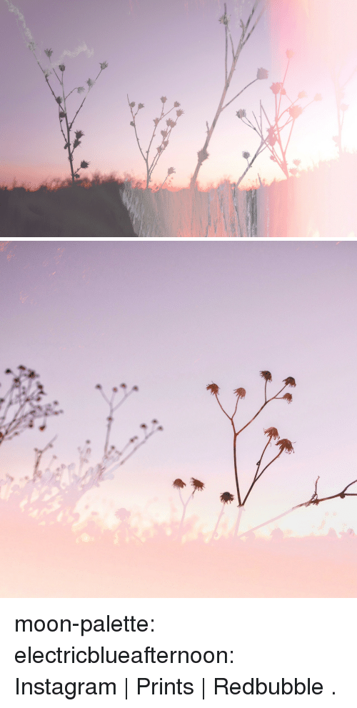 Instagram, Tumblr, and Blog: moon-palette:  electricblueafternoon:    Instagram | Prints | Redbubble     .