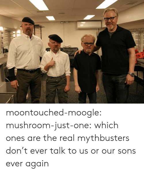 Target, Tumblr, and Blog: moontouched-moogle:  mushroom-just-one:  which ones are the real mythbusters   don't ever talk to us or our sons ever again