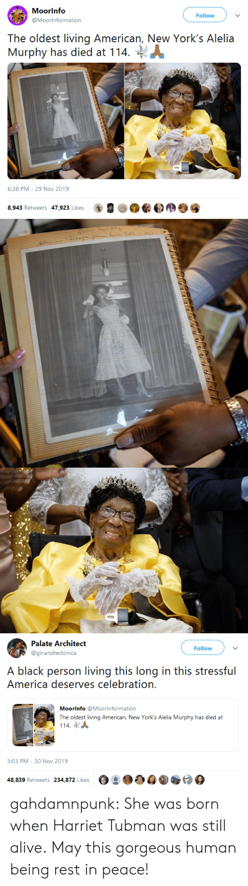 The Oldest: Moorinfo  Follow  @Moorinformation  The oldest living American, New York's Alelia  Murphy has died at 114  6:38 PM - 29 Nov 2019  8,943 Retweets 47,923 Likes   EZVOL   Palate Architect  Follow  @ginandtectonica  A black person living this long in this stressful  America deserves celebration.  Moorinfo @Moorlnformation  The oldest living American, New York's Alelia Murphy has died at  114  3:03 PM - 30 Nov 2019  48,839 Retweets 234,872 Likes gahdamnpunk: She was born when Harriet Tubman was still alive. May this gorgeous human being rest in peace!