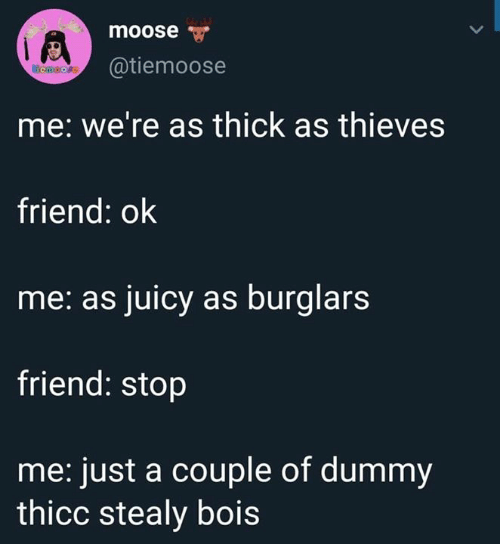 Juicy, Moose, and Friend: moose  @tiemoose  emoore  me: we're as thick as thieves  friend: ok  me: as juicy as burglars  friend: stop  me: just a couple of dummy  thicc stealy bois
