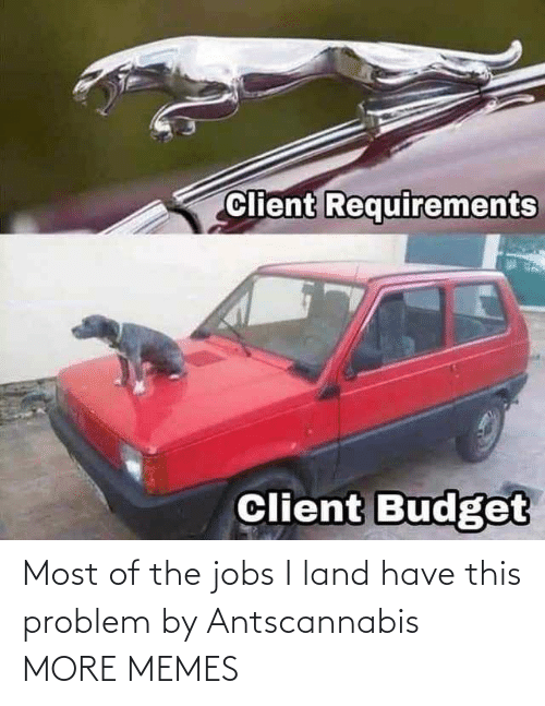 Jobs: Most of the jobs I land have this problem by Antscannabis MORE MEMES