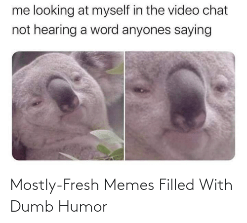 Dumb: Mostly-Fresh Memes Filled With Dumb Humor