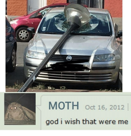 God, Moth, and Oct: MOTH oct 16, 2012  god i wish that were me