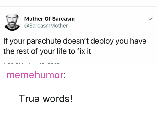 """parachute: Mother Of Sarcasm  @SarcasmMother  If your parachute doesn't deploy you have  the rest of your life to fix it <p><a href=""""http://memehumor.net/post/173477611275/true-words"""" class=""""tumblr_blog"""">memehumor</a>:</p>  <blockquote><p>True words!</p></blockquote>"""