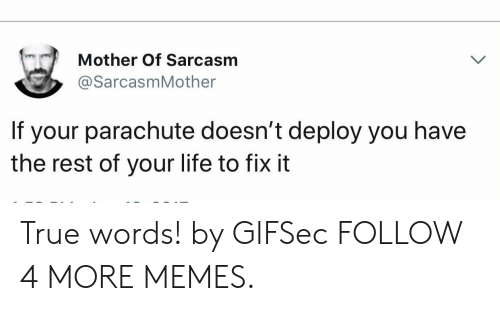 parachute: Mother Of Sarcasm  @SarcasmMother  If  your parachute doesn't deploy you have  the rest of your life to fix it True words! by GIFSec FOLLOW 4 MORE MEMES.