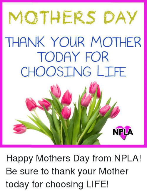 Npla: MOTHERS DAY  THANK YOUR MOTHER  TODAY FOR  CHOOSING LIFE  NPLA Happy Mothers Day from NPLA!  Be sure to thank your Mother today for choosing LIFE!