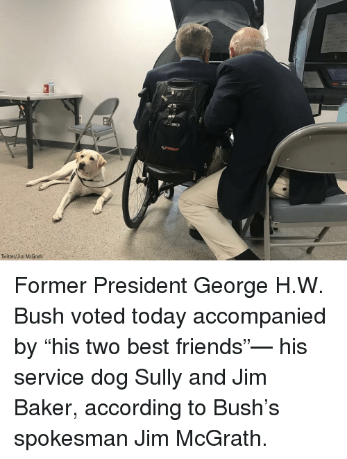 """Friends, Memes, and Twitter: motion  Twitter/Jim McGrath Former President George H.W. Bush voted today accompanied by """"his two best friends""""— his service dog Sully and Jim Baker, according to Bush's spokesman Jim McGrath."""