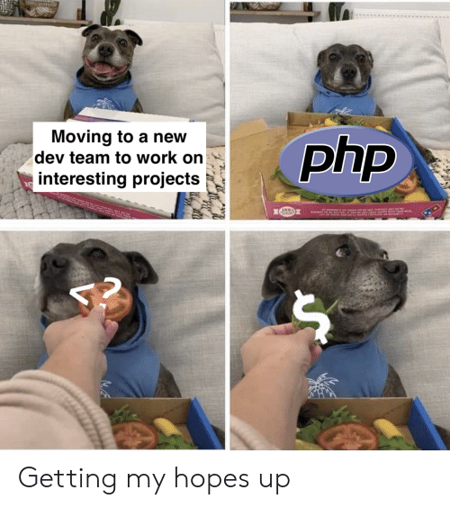 Work, Php, and Dev: Moving to a new  dev team to work on  interesting projects  php  2 Getting my hopes up