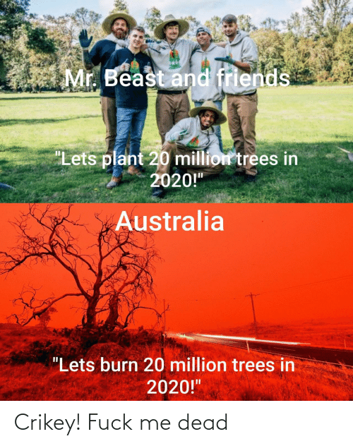 "plant: Mr. Beast and friends  ""Lets plant 20 million trees in  2020!""  Australia  ""Lets burn 20 million trees in  2020!"" Crikey! Fuck me dead"