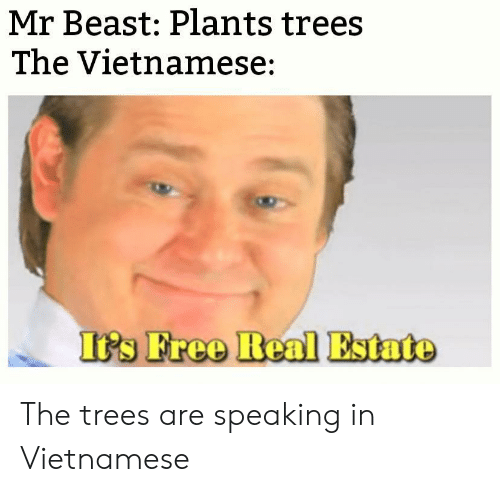 Free, Trees, and Real Estate: Mr Beast: Plants trees  The Vietnamese:  It's Free Real Estate The trees are speaking in Vietnamese