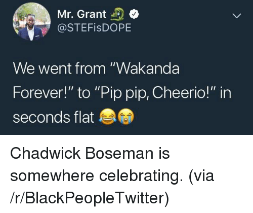 """Blackpeopletwitter, Forever, and Chadwick Boseman: Mr. Grant  @STEFisDOPE  We went from """"Wakanda  Forever!"""" to """"Pip pip, Cheerio!"""" in  seconds flat <p>Chadwick Boseman is somewhere celebrating. (via /r/BlackPeopleTwitter)</p>"""