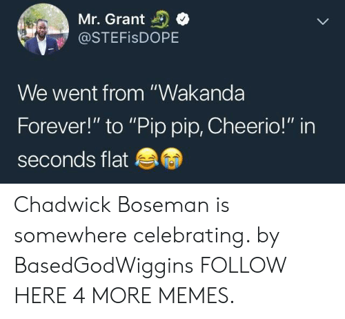 """Wakanda Forever: Mr. Grant  @STEFISDOPE  We went from """"Wakanda  Forever!"""" to """"Pip pip, Cheerio!"""" in  seconds flat Chadwick Boseman is somewhere celebrating. by BasedGodWiggins FOLLOW HERE 4 MORE MEMES."""