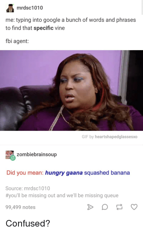 Confused, Fbi, and Gif: mrdsc1010  me: typing into google a bunch of words and phrases  to find that specific vine  fbi agent:  GIF by heartshapedglassesxo  zombiebrainsoup  GAY  Did you mean: hungry gaana squashed banana  Source: mrdsc1010  #you'll be missing out and we'll be missing queue  99,499 notes Confused?