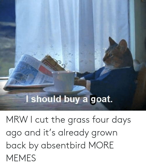 ago: MRW I cut the grass four days ago and it's already grown back by absentbird MORE MEMES