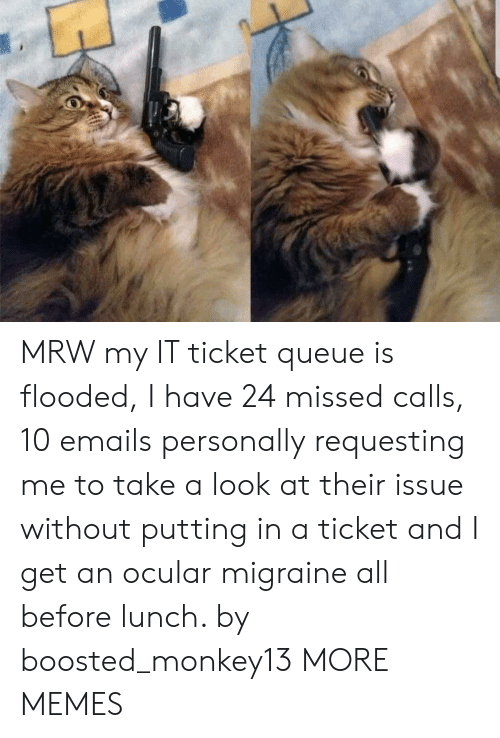 Missed Calls: MRW my IT ticket queue is flooded, I have 24 missed calls, 10 emails personally requesting me to take a look at their issue without putting in a ticket and I get an ocular migraine all before lunch. by boosted_monkey13 MORE MEMES