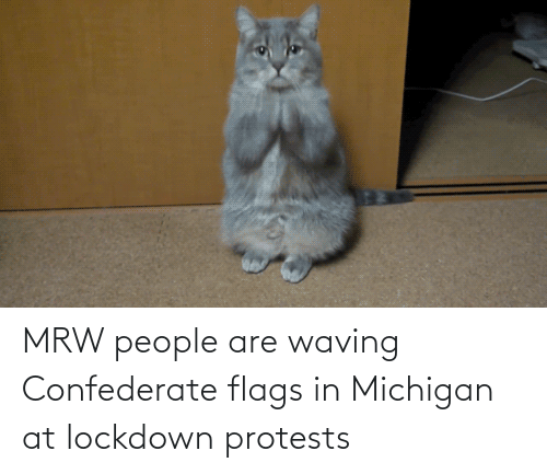 waving: MRW people are waving Confederate flags in Michigan at lockdown protests