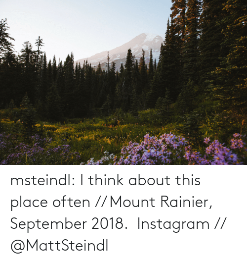About: msteindl: I think about this place often // Mount Rainier, September 2018.    Instagram // @MattSteindl