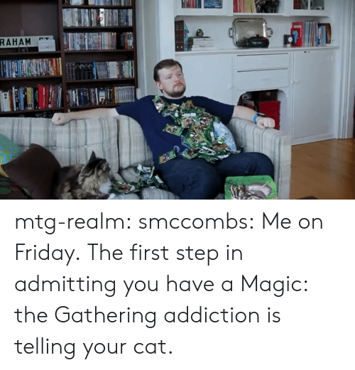 mtg: mtg-realm:  smccombs:  Me on Friday.  The first step in admitting you have a Magic: the Gathering addiction is telling your cat.
