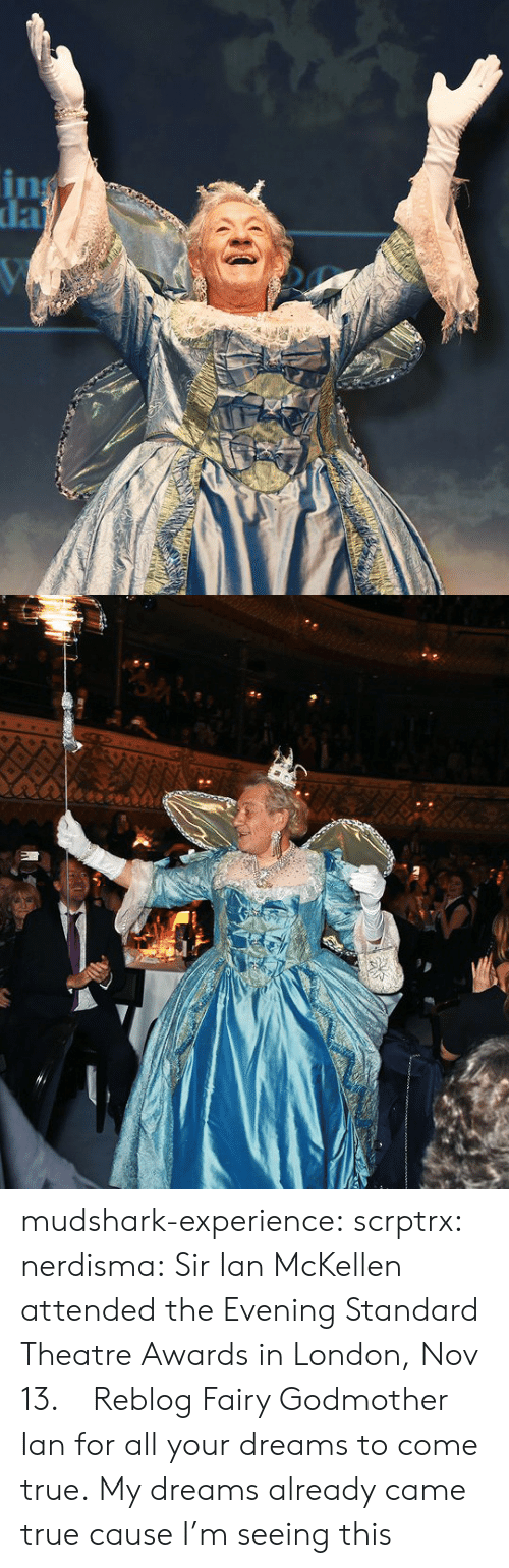 Ian McKellen: mudshark-experience:  scrptrx:  nerdisma:  Sir Ian McKellen attended the Evening Standard Theatre Awards in London, Nov 13.   Reblog Fairy Godmother Ian for all your dreams to come true.   My dreams already came true cause I'm seeing this