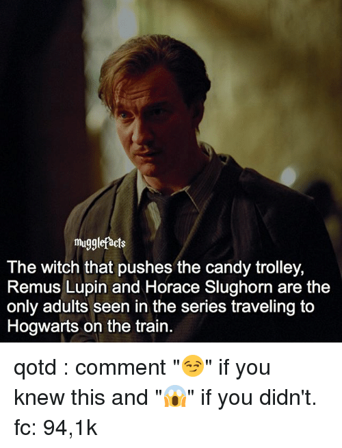 """trolleys: muggle facts  The witch that pushes the candy trolley,  Remus Lupin and Horace Slughorn are the  only adults seen in the series traveling to  Hogwarts on the train qotd : comment """"😏"""" if you knew this and """"😱"""" if you didn't. fc: 94,1k"""