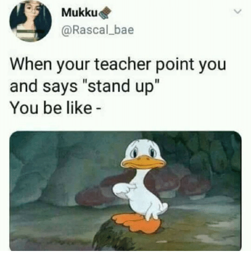 Bae, Be Like, and Teacher: Mukku  @Rascal_bae  When your teacher point you  and says stand up  You be like