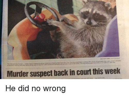 Girl Memes, Murder, and Back: Murder suspect back in court this week He did no wrong