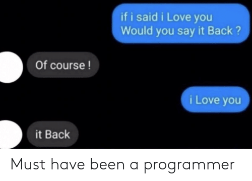 programmer: Must have been a programmer