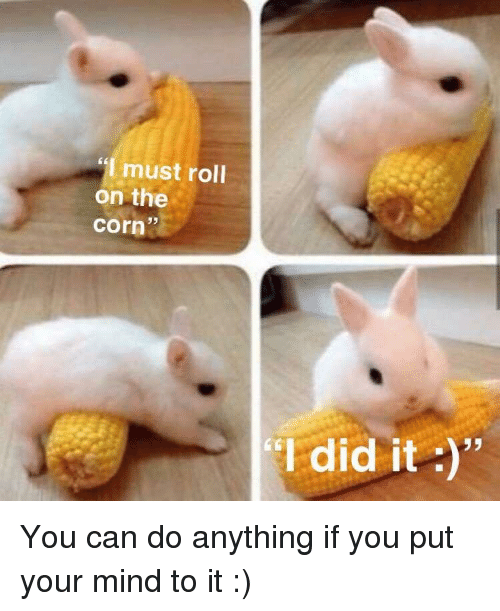 "Mind, Corn, and Can: must roll  on the  corn  35  I did it "" You can do anything if you put your mind to it :)"