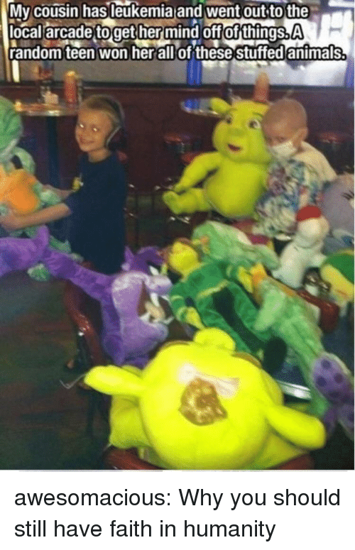 Tumblr, Blog, and Http: Mv cousin hasleukemia and went out to the  local arcade toget her mind off of things.A  random teen won herallof these stuffed antmals awesomacious:  Why you should still have faith in humanity