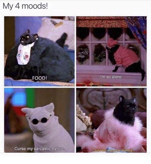 Being Alone, Food, and Nature: My 4 moods!  FOOD!  I'm so alone  Curse my sarcastic nature