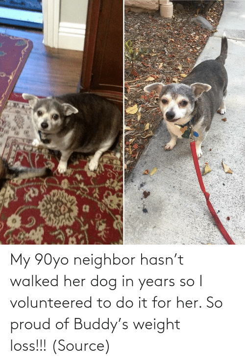 neighbor: My 90yo neighbor hasn't walked her dog in years so I volunteered to do it for her. So proud of Buddy's weight loss!!! (Source)