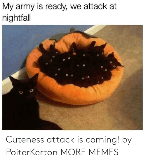 Dank, Memes, and Target: My army is ready, we attack at  nightfall  0 Cuteness attack is coming! by PoiterKerton MORE MEMES