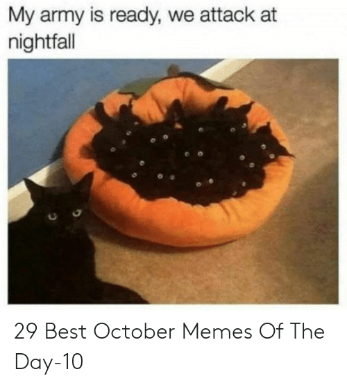 Memes Of: My army is ready, we attack at  nightfall 29 Best October Memes Of The Day-10
