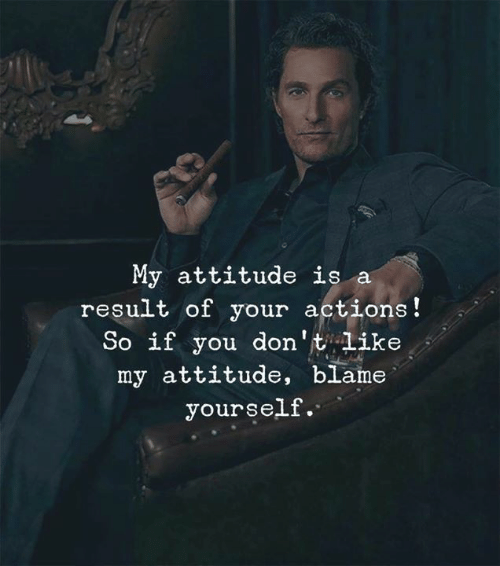 Attitude: My attitude is a  result of your actions!  So if you don't like  my attitude, blame  yourself.