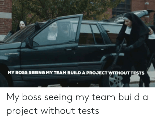 Boss, Project, and Team: MY BOSS SEEING MY TEAM BUILD A PROJECT WITHOUT TESTS My boss seeing my team build a project without tests