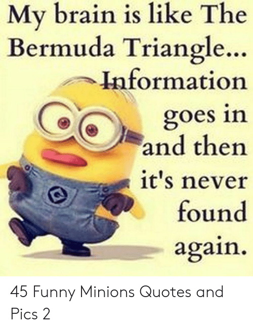 Minions: My brain is like The  Bermuda Triangle..  Information  goes in  and then  it's never  found  again 45 Funny Minions Quotes and Pics 2