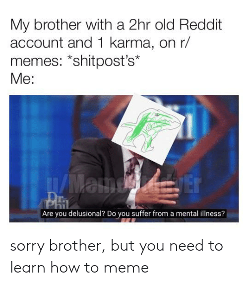 Meme, Memes, and Reddit: My brother with a 2hr old Reddit  account and 1 karma, on r/  memes: *shitpost's*  Me:  Are you delusional? Do you suffer from a mental illness? sorry brother, but you need to learn how to meme