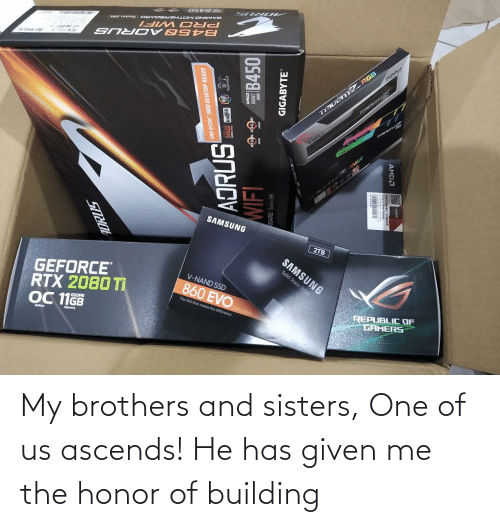 building: My brothers and sisters, One of us ascends! He has given me the honor of building