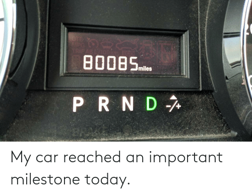 my car: My car reached an important milestone today.
