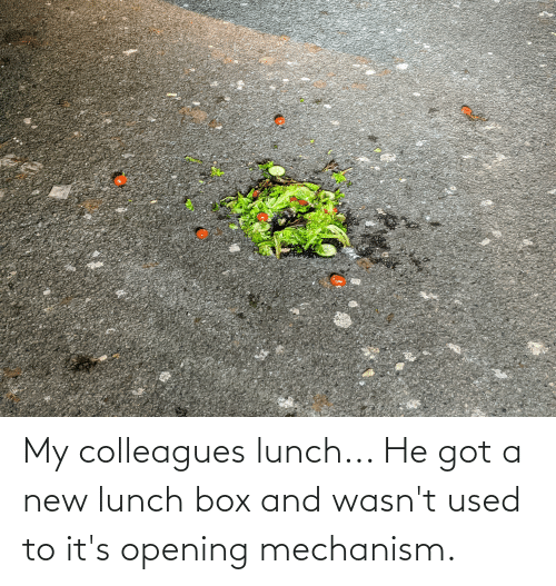 colleagues: My colleagues lunch... He got a new lunch box and wasn't used to it's opening mechanism.