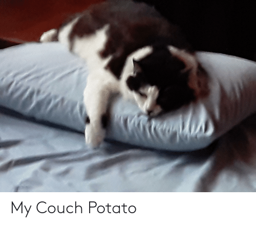 Couch: My Couch Potato